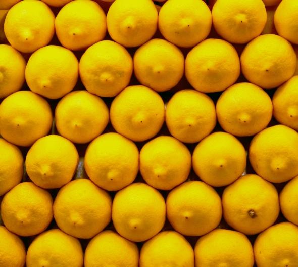 lemons_5836497465